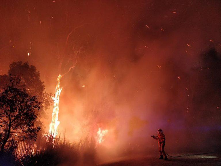 Genius local invention stops bushfires in minutes