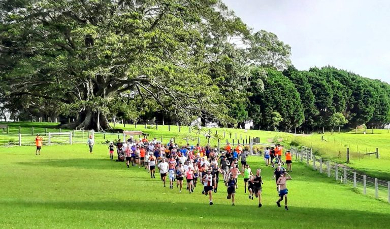 Parkrunning across the hills of Maleny can save your sanity