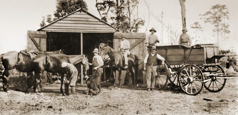 Historic photos restored: see the treasures of Buderim's past