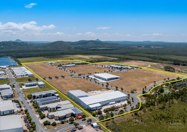Industrial land sales have gone 'completely bananas'