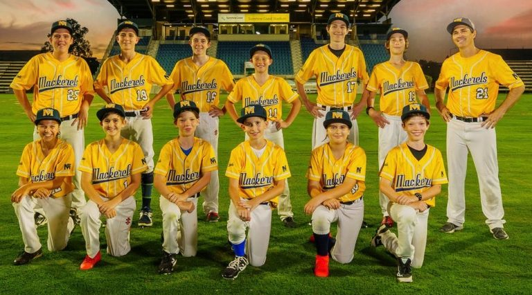 Field of dreams: local baseball steps up to the plate