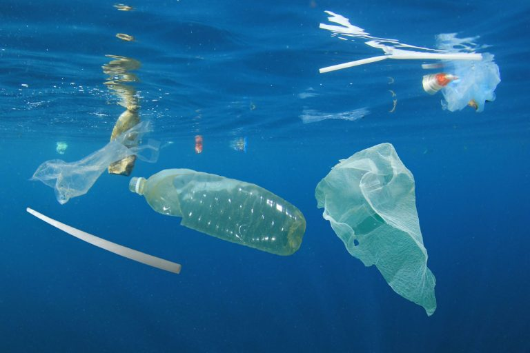How people power is helping win war on plastic